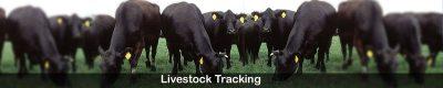livestock-tracking-applicat