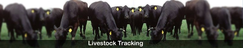 livestock-tracking-applicat